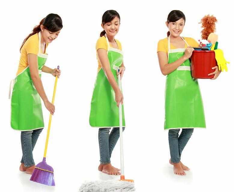 domestic_helper